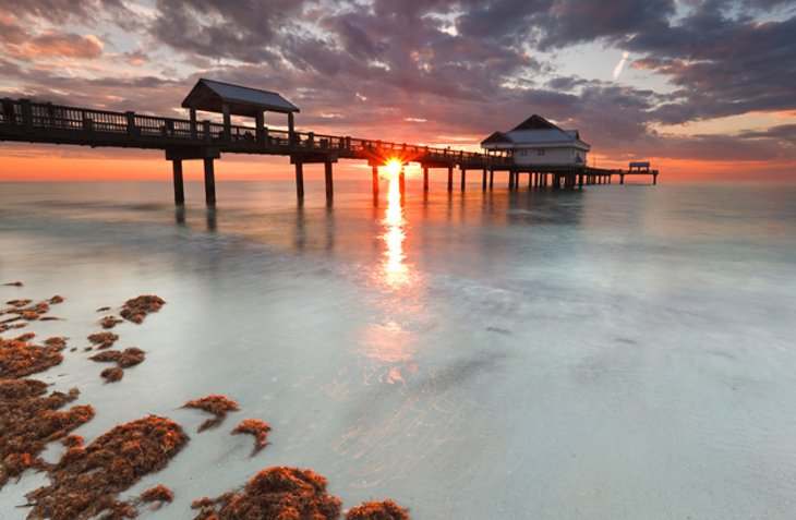 11 top rated tourist attractions in st petersburg and for Best places to live in tampa fl