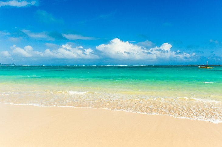 12 Top Rated Beaches In The Honolulu