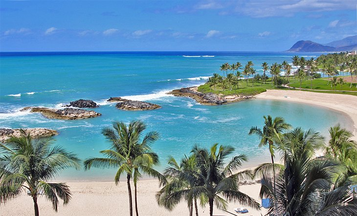 12 Top Rated Beaches In The Honolulu Area Planetware,Fall Blooming Perennials Fall Perennial Flowers