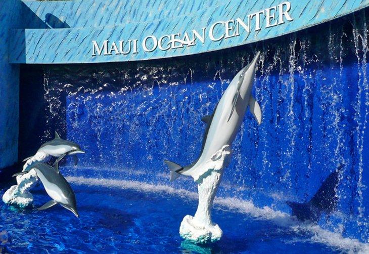 مرکز اقیانوس مونو