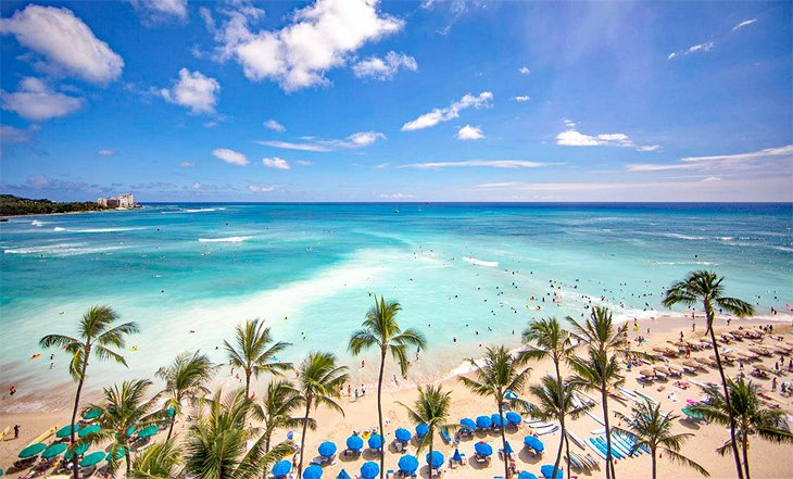 14 Top Rated Resorts On Oahu Planetware