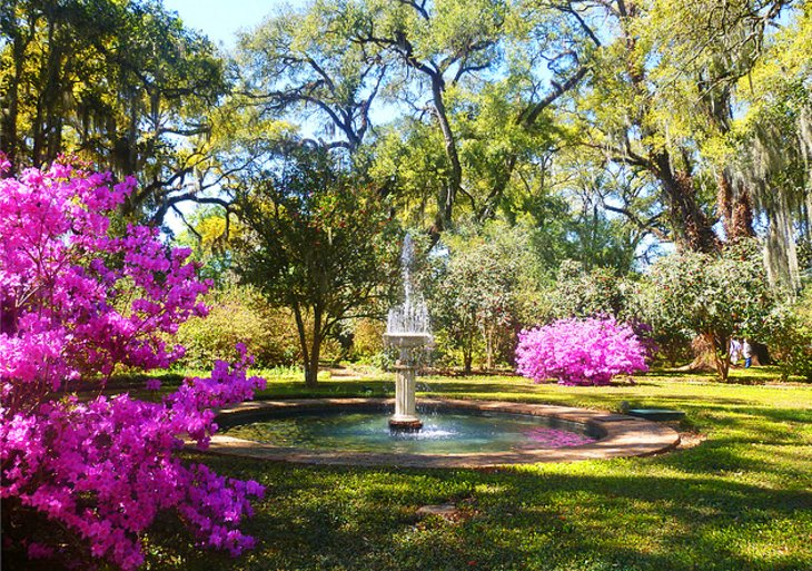 Rosedown Plantation and Gardens