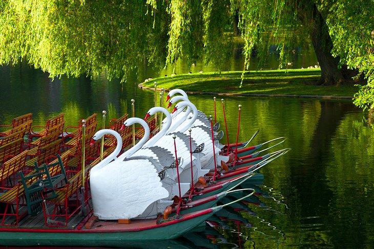 Botes Swan de Boston Common y Public Garden
