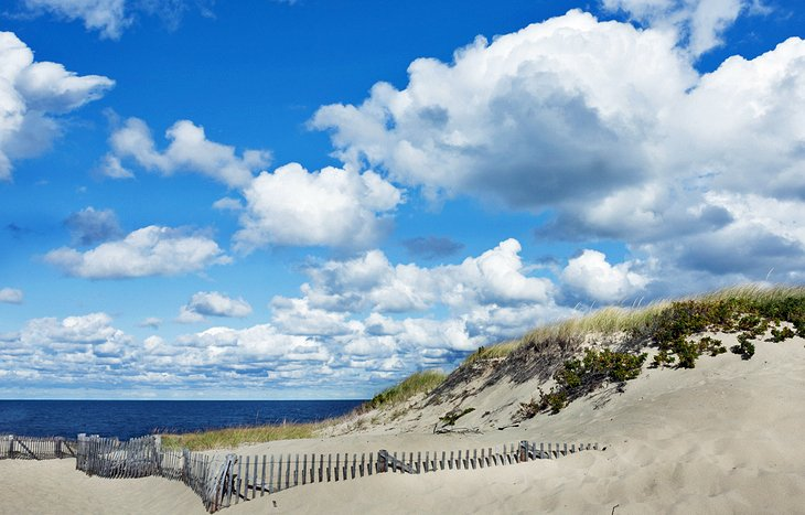 12 Top-Rated Tourist Attractions in Cape Cod and the ...