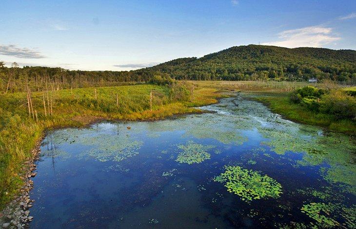 Reserva de Blue Hills