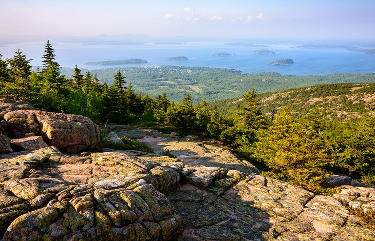 Acadia National Park Camping With Dogs