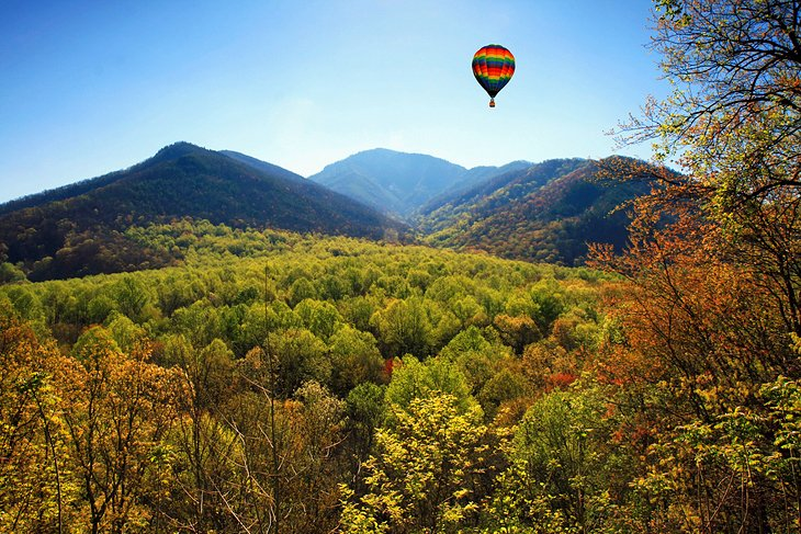 Zip Lines and Hot Air Balloon Rides