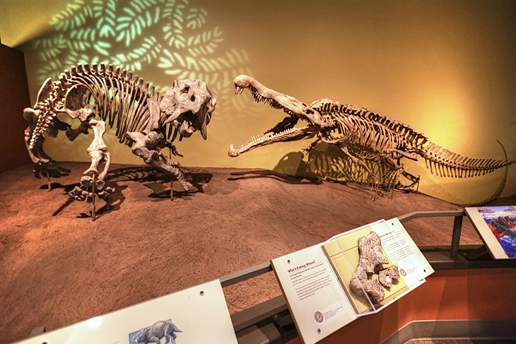 New Mexico Museum of Natural History and Science