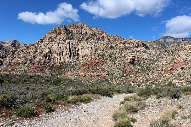 White Rock - Sendero Willow Spring Loop