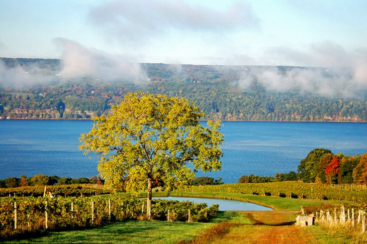 11 top rated tourist attractions in new york state planetware finger lakes sciox Images