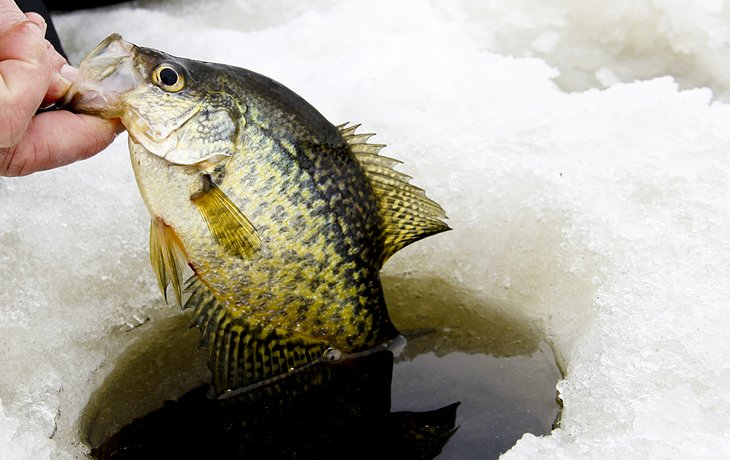 9 best ice fishing lakes in ohio planetware for Crappie fishing ohio