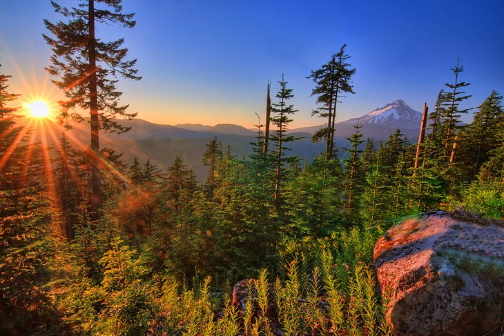 9 Top Attractions & Things to Do in Mt. Hood National Forest, OR | PlanetWare