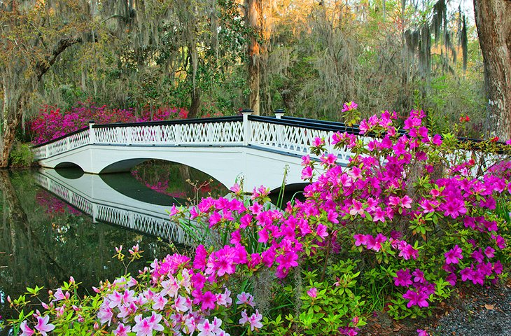 14 TopRated Tourist Attractions in Charleston South Carolina – Charleston Tourist Attractions Map
