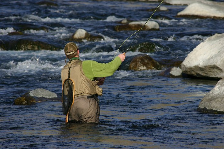 12 top rated fly fishing destinations in tennessee for Best fishing in usa