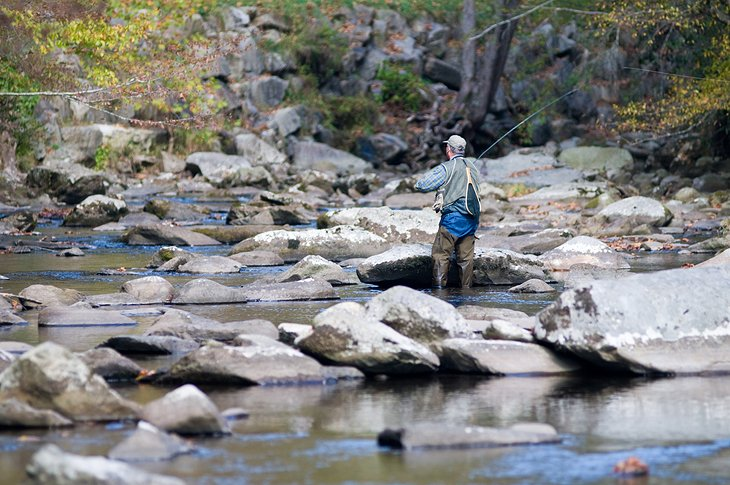 12 Top-Rated Fly Fishing Destinations in Tennessee | PlanetWare