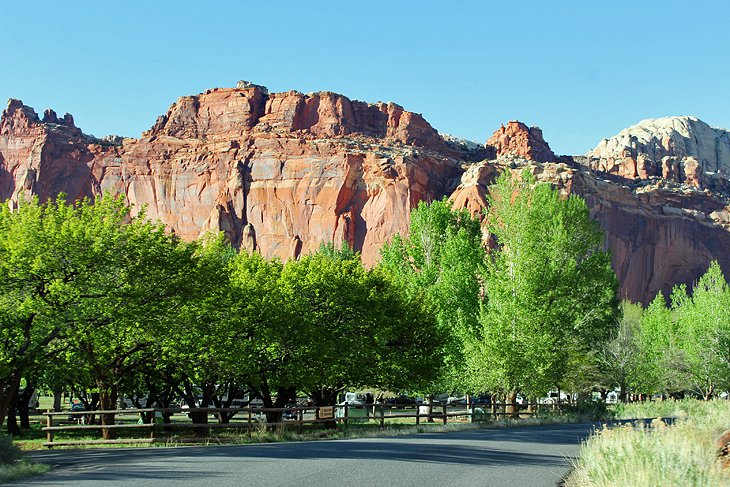 Fruita Campground in Capitol Reef National Park