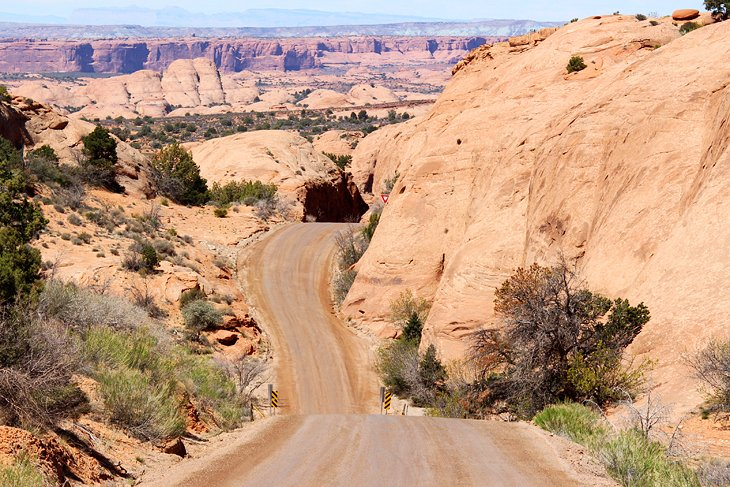 Road in Sand Flats Recreation Area