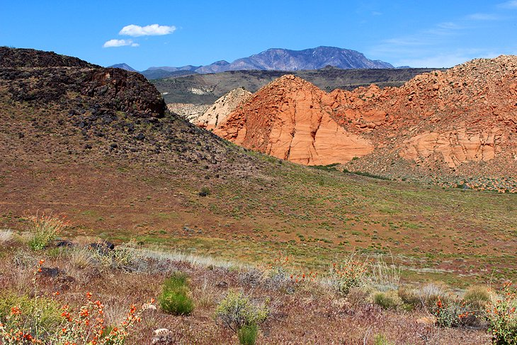 Yellow Knolls Trail, Red Cliffs Recreation Area