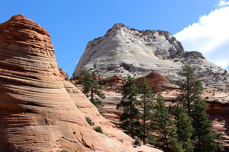 Landscape on the east side of Zion National Park