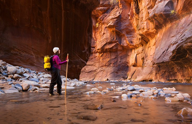 9 Top-Rated Hiking Trails in Zion National Park | PlanetWare on