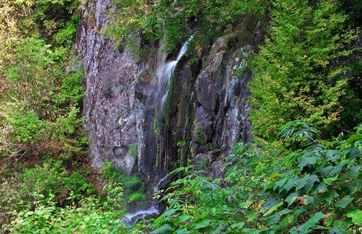 Lewis Falls Trail