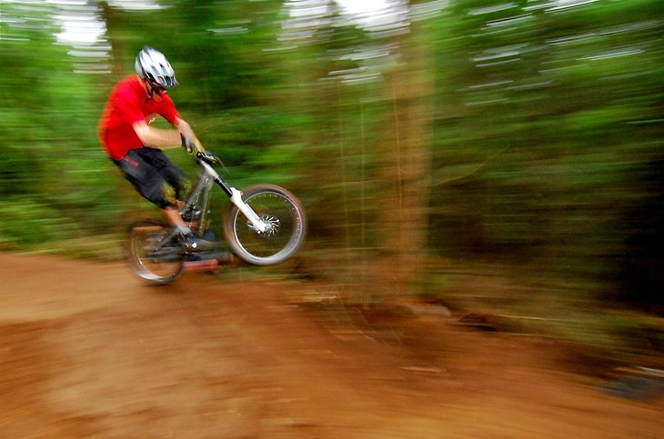 Galbraith Mountain Bike Park
