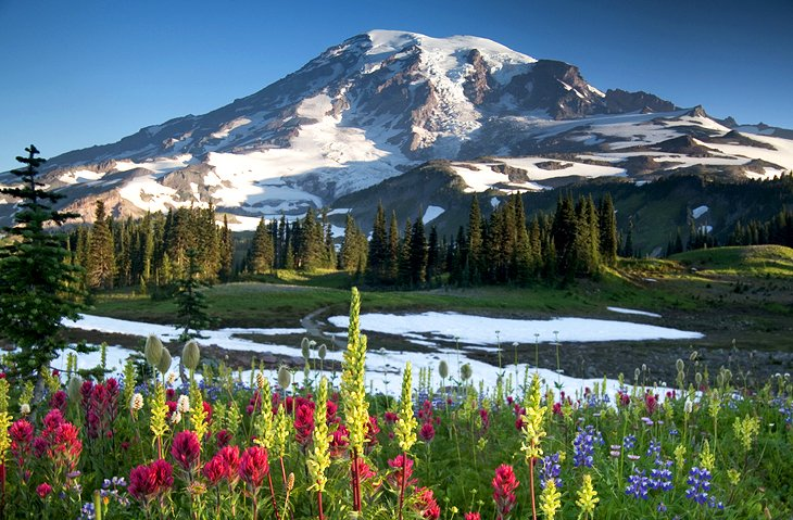 15 TopRated Tourist Attractions in Washington State – Washington State Tourist Attractions Map
