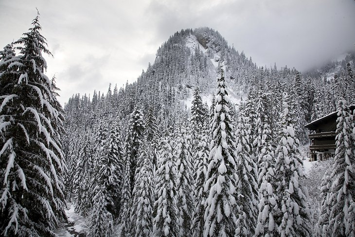 Alpental Ski Resort