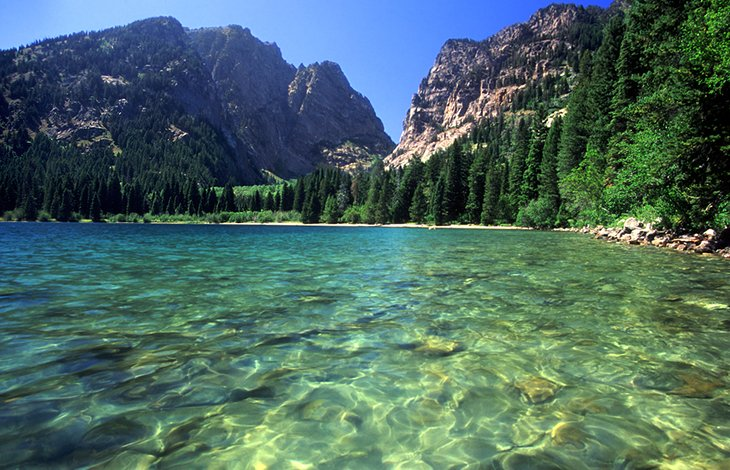 Lazo del lago Phelps