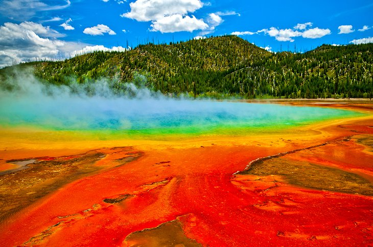 Midway Geyser Basin & the Grand Prismatic Spring