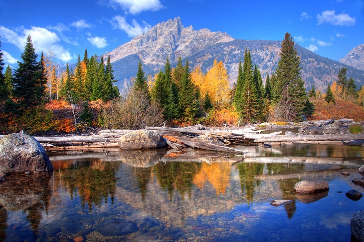 10 top-rated fly fishing destinations in wyoming | planetware, Fly Fishing Bait