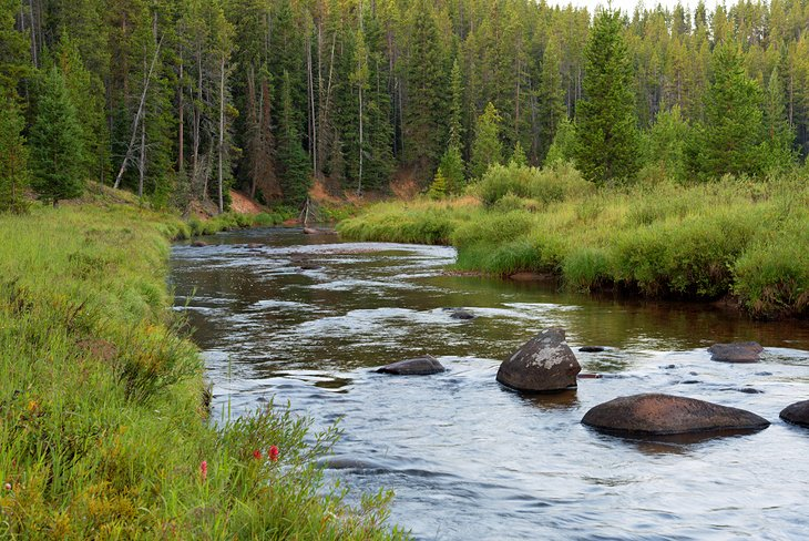 Tongue River, Bighorn Mountains