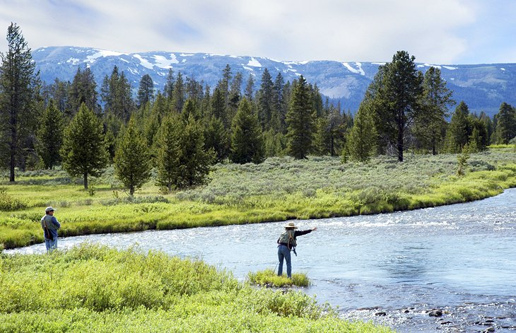 Fly fishing near Yellowstone National Park