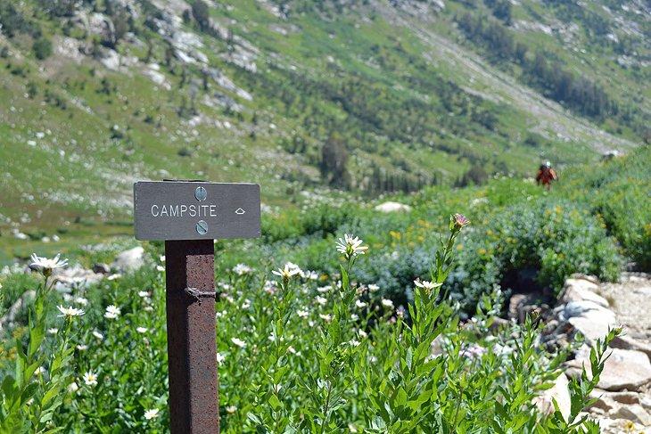 Cascade Canyon Camping Zones