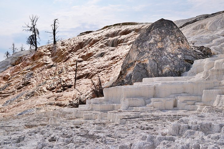 Mammoth Hot Springs, the namesake attraction of Mammoth Springs Campground