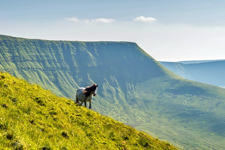 13 Top-Rated Tourist Attractions in South Wales | PlanetWare