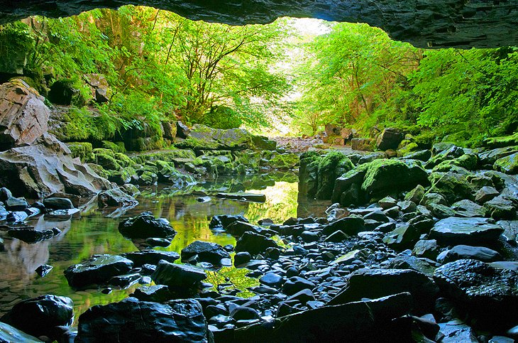Dan yr Ogof and the Showcase Caves