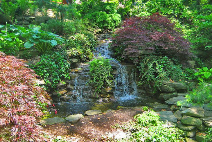 Roses In Garden: 11 Top-Rated Tourist Attractions In Cleveland