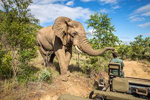 12 Best Game Reserves in Africa