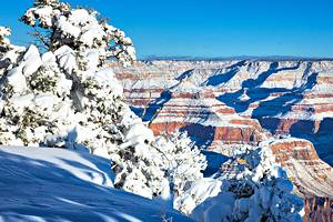 9 Best Places to See Snow in Arizona