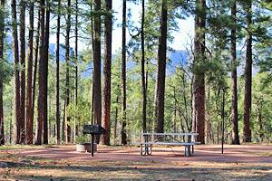 8 Top-Rated Campgrounds near Payson, Arizona