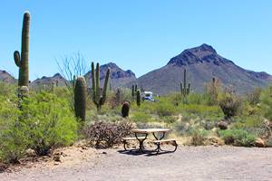 12 Top-Rated Campgrounds in Arizona