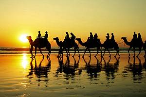 8 Top-Rated Tourist Attractions in Broome