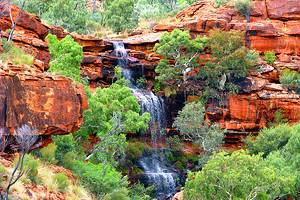 Exploring Watarrka National Park (Kings Canyon)