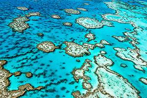Visiting the Great Barrier Reef: 11 Top-Rated Attractions & Things to Do