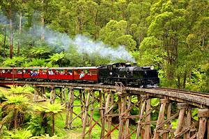 12 Top-Rated Tourist Attractions in the Yarra Valley and Dandenong Ranges