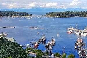 10 Top-Rated Things to Do in Nanaimo, B.C.