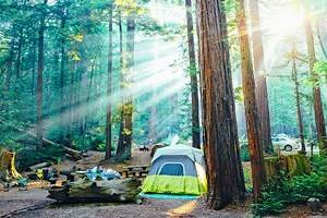 12 Top-Rated Campgrounds near Big Sur & Pfeiffer Big Sur State Park, CA