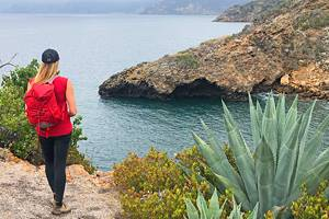 7 Top Things to Do in Channel Islands National Park, CA