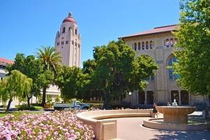 12 Top-Rated Attractions & Things to Do in Palo Alto, CA